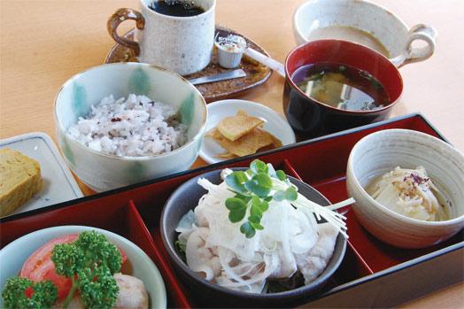 昼のみ提供の「今週のランチ(980 円)」。この日のメニューは、ぶたシャブサラダ、里芋と長芋のオランダ揚げ、エノキと白菜のスープ浸し、卵焼き、雑穀米(白米も選べます)味噌汁、漬け物、コーヒー(紅茶も選べます)でした