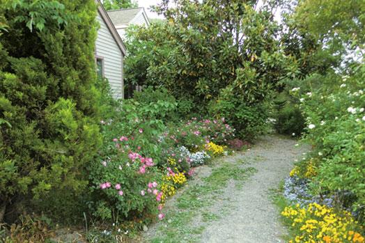 駐車場からエントランスまでの小道は、季節により表情が変わります。花で彩られる春もまた楽しみ